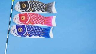 鯉のぼりの掲揚